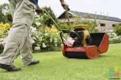 Lawn Mowing Business