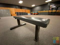Fitness works bench