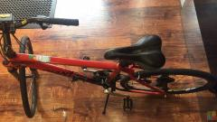 Giant Boulder Bike **Genoa pay available **