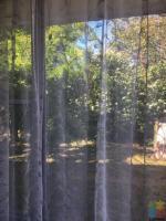 Room for rent-Pahurehure/Papakura