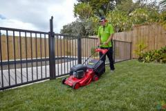 Well established lawn and garden business available