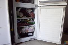 F&P Fridge bottom mount Freezer 246L Frost Free, 3 years old, 100%