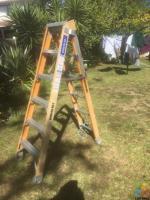 Ladder suit electrical tec