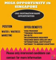 JOB Opportunity Abroad