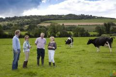we are looking for a dairy farm