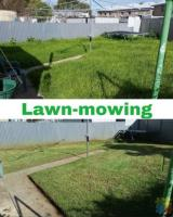 Are you looking for help with your garden maintenance or landscaping?