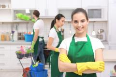 Home Cleaning Business for sale