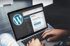 Intermediate WordPress developer