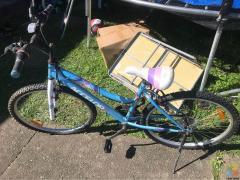 99% New Bike