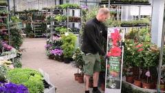 Garden Centre Nursery/Retail - 2 Positions