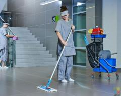 Commercial or Institutional Cleaner