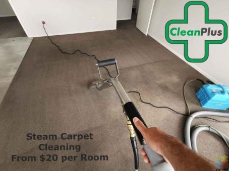 Steam Carpet Shampoo