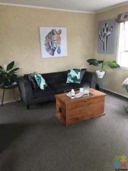 Ellerslie Single Room