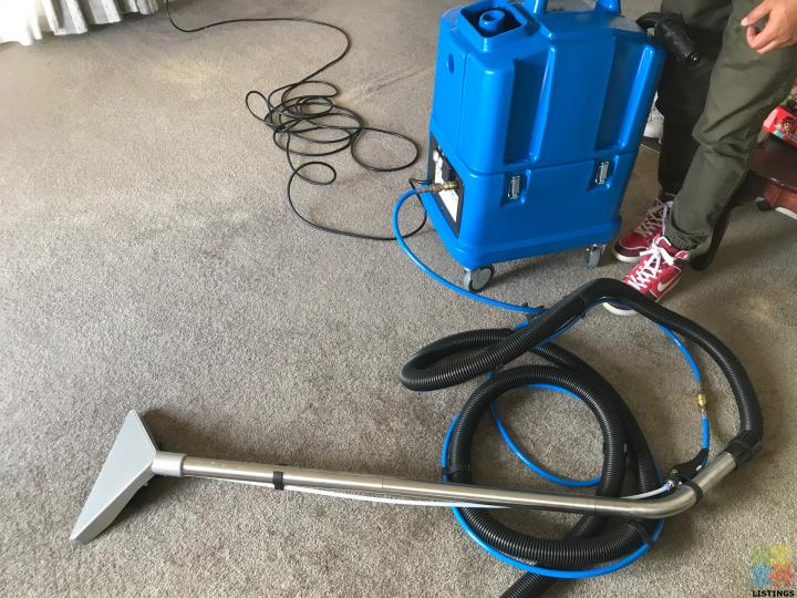 Professional Carpet cleaning (whole Auckland) - 1/4