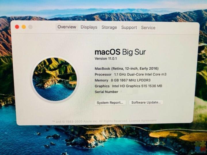 Apple MacBook 12-inch (2016, Rose Gold, Core m3) - 3/3