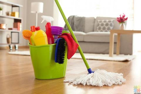 Are You Looking for a Cleaning Freak!