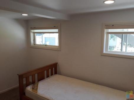 Self-contained a room (Mt Eden)
