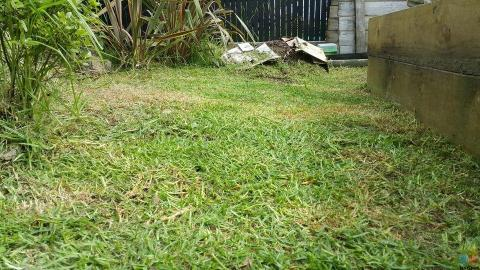 Free quote, Cheap and the Neatest lawn mowing service.
