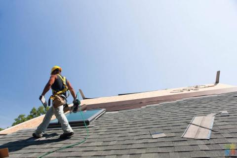 Roofing Apprentice