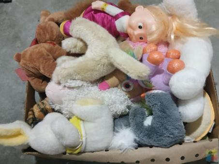 Box with soft toys