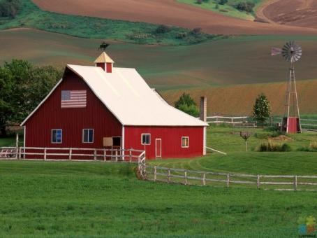 Searching for farm assistant position