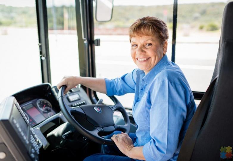 Fulltime Urban Bus Driver - 1/1