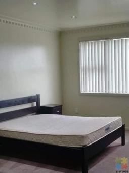 3 Bedroom furnished Apartment in Otahuhu