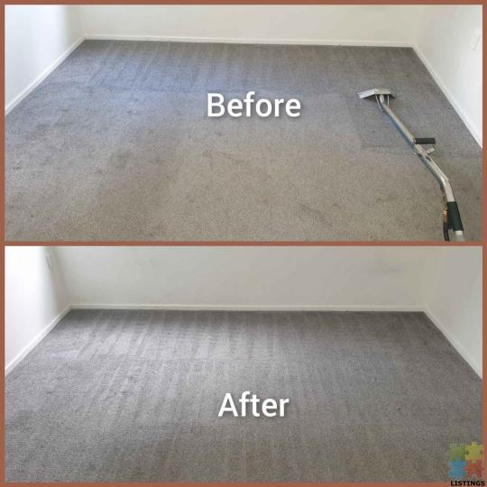 Carpet and sofa steam cleaning - 1/1