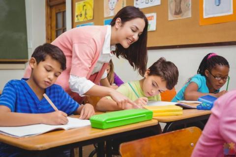 Registered ECE or Primary teacher