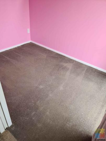 Carpet cleaning - 1/1