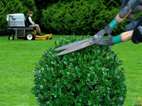 Yard Maintenance and Groomer