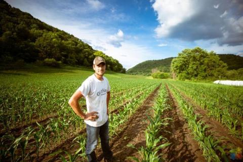 Farm Assistant