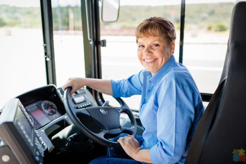 School bus drivers - Palmerston North & Feilding - 1/1