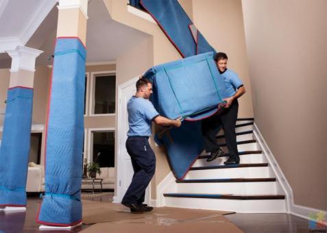 Furniture Mover Helper