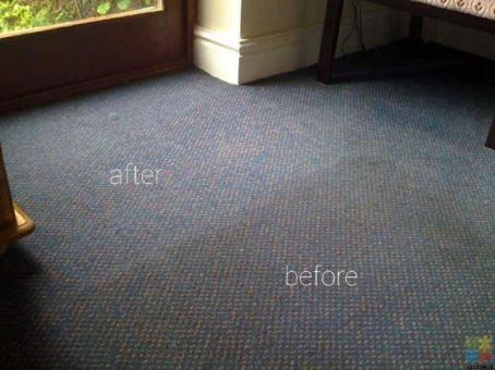 Carpet shampoo steam cleaning