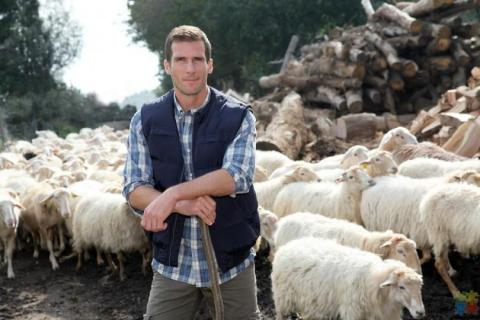 Intermediate Shepherd