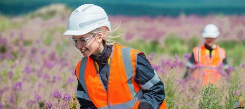 Ecological Restoration worker