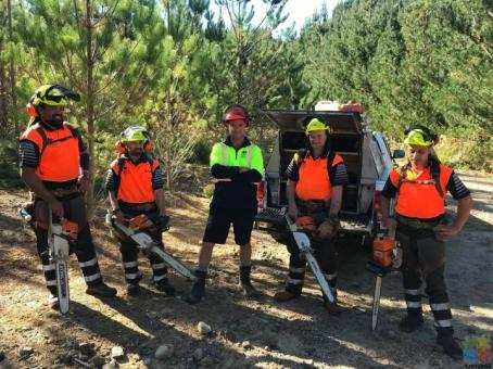 Experience Forestry Waste Thinner Operator required.