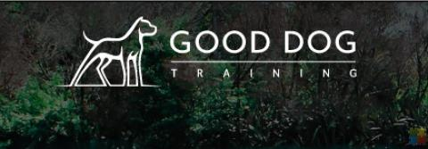 Good Dog Training