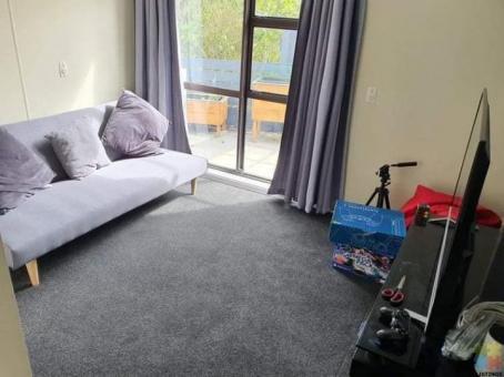 Room to rent Karori