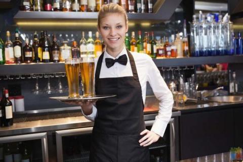 Bartender / Waitstaff