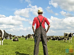 I am looking for a farming job in the Canterbury region