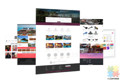 Professional Business Websites